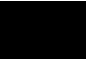 Q/S Logo